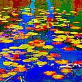 Lily Pads And Koi  Pond Waterlilies Summer Gardens Beautiful Blue Waters Quebec Art Carole Spandau  by Carole Spandau