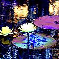 Lily Pond Fantasy by Anita Lewis