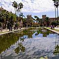 Dreaming Of San Diego by Brenda Kean