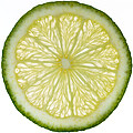 Lime Slice by Steve Gadomski