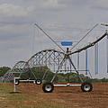 Limestone County Crop Irrigation by Kathy Clark