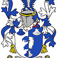 Linaker Coat Of Arms Irish by Heraldry