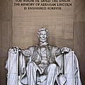 Lincoln by Jemmy Archer
