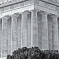 Lincoln Memorial Pillars Bw by Susan Candelario