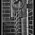 Linked II by Debbie Portwood