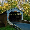 Linton Stevens Covered Bridge by Michael Porchik