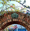 Lion Arch With Flowers by Katie Beougher