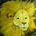Lion by Bertie Edwards