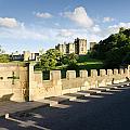 Lion Bridge At Alnwick Castle by David Head