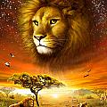 Lion Dawn by Adrian Chesterman