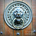 Lion Door Knocker In Norway by Carol Groenen