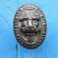 Lion Face Door Knob by Lainie Wrightson