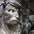 Lion Fierce And Fearsome by Lorraine Devon Wilke
