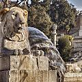 Lion Fountain In Rome Italy by Sophie McAulay