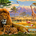 Lion by MGL Meiklejohn Graphics Licensing