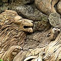 Lion On The Tree Of  Life by Zina Stromberg