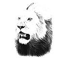 Lion Portrait - Lions Of The Masai Mara by Aidan Moran