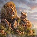 Lion Pride by Phil Jaeger