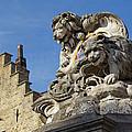 Lion Statue In Bruges by Jaroslav Frank