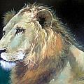 Lion by Sundarakannan Srinivasan