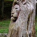 Lion Tree by Maria Urso