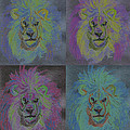 Lion X 4 Color  By Jrr by First Star Art
