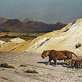 Lioness And Cubs by Jean Leon Gerome