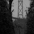 Lions Gate Bridge by Nancy Harrison