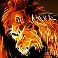 Lions In Love by Pamela Johnson