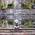 Lions In The Renaissance Court Fountain 2 by Jeelan Clark