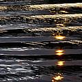 Liquid by Steve Taylor