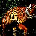Liquid Tiger by Daniel Eskridge