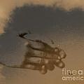 Listen To The Sky by Steven Digman