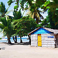 Little Beach Shack Under The Palms by Elaine Plesser