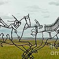 Little Bighorn Battlefield by Nick  Boren