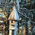 Little Birdhouse In The Woods by Charlie and Norma Brock