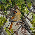 Little Birdie by Melly Terpening