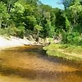Little Black Creek - Hoffmaster State Park by Michelle Calkins