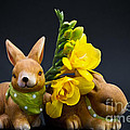 Little Bunny by Angela Doelling AD DESIGN Photo and PhotoArt
