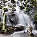 Little Cascade In Marlay Park Dublin by Semmick Photo