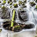 Little Cascade In Marlay Park by Semmick Photo