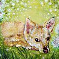 Little Dog Named Fern by Ashleigh Dyan Bayer