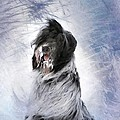 Little Doggie In A Snowstorm by Gun Legler