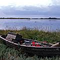 Little Fish Boat Samsoe Island by Colette V Hera  Guggenheim