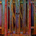 Little Gate by Michele Avanti