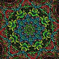 Little Green Men Kaleidoscope by Alec Drake
