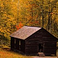 Little Greenbrier Schoolhouse In Autumn  by Dan Sproul