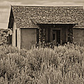 Little House In The Sage Bw by Cathy Anderson
