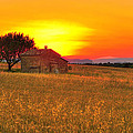 Little House On The Prairie by Midori Chan