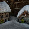 Little Houses Big Snow by Berkehaus Photography